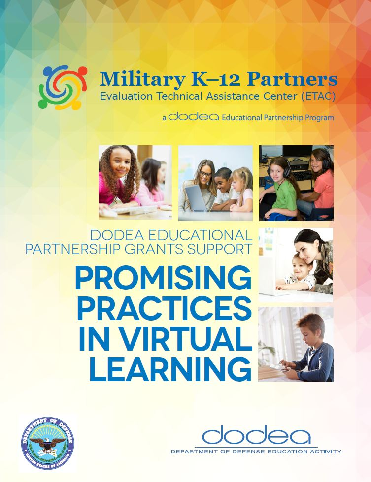 Promising Practices in Virtual Learning